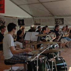 Unterhaltsames Sommerkonzert(Bild:Schwyzer Horngruppe)