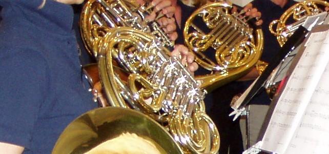 Mitglieder(Bild:Schwyzer Horngruppe)